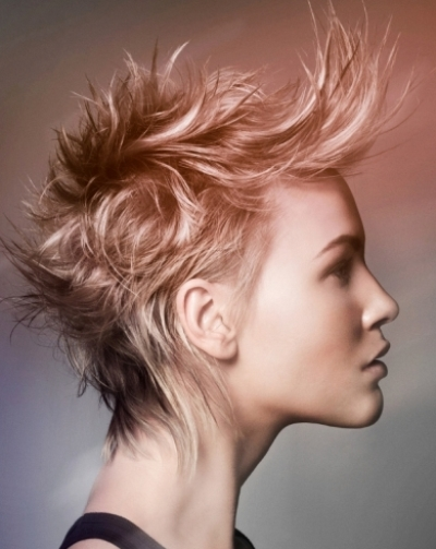 Punk Hairstyles Hairstyles 2017 Hair Colors And Haircuts