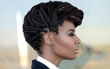 formal box braids updo hairstyles 2014