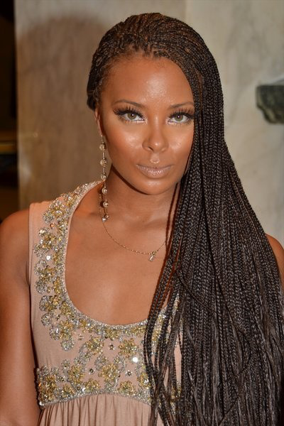 gorgeous small box braids hairstyles 2014