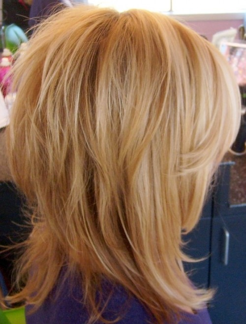 Shag Haircut and Thin Hair | Hairstyles 2017, Hair Colors and Haircuts