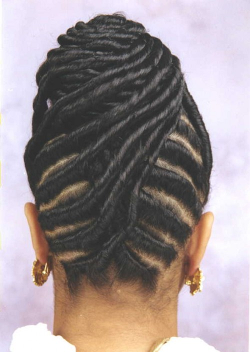 twist braided hairstyles for black women 2014