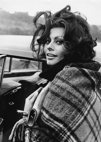 Sophia Loren brunette hair colors 2015
