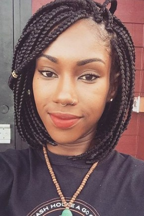 Astounding Top Trendy Box Braids Hairstyles 2015 Hairstyles 2016 Hair Hairstyle Inspiration Daily Dogsangcom