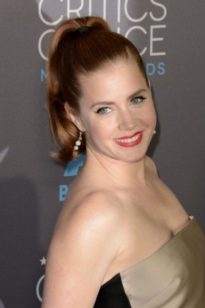 Amy Adams summer ponytails 2015