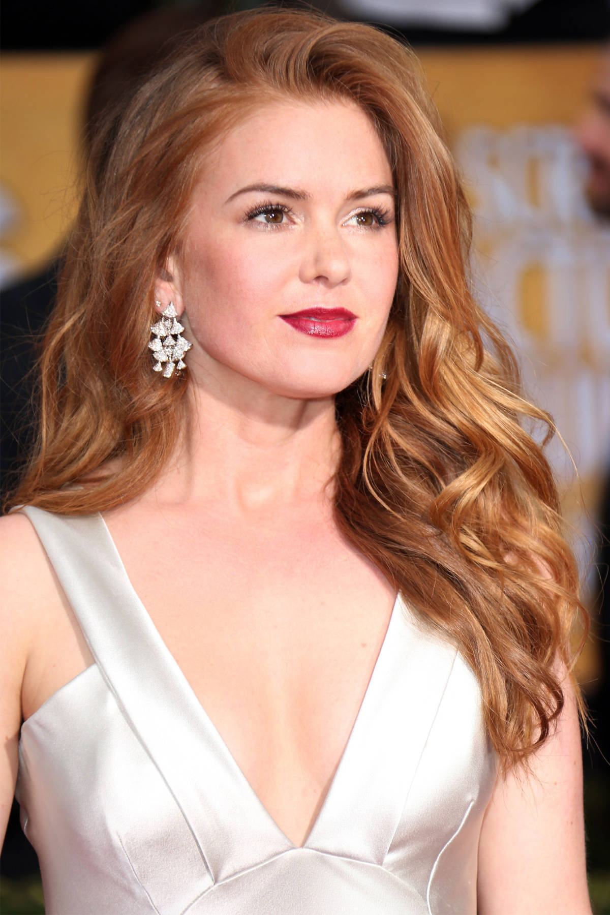 Isla Fisher red hair colors 2016