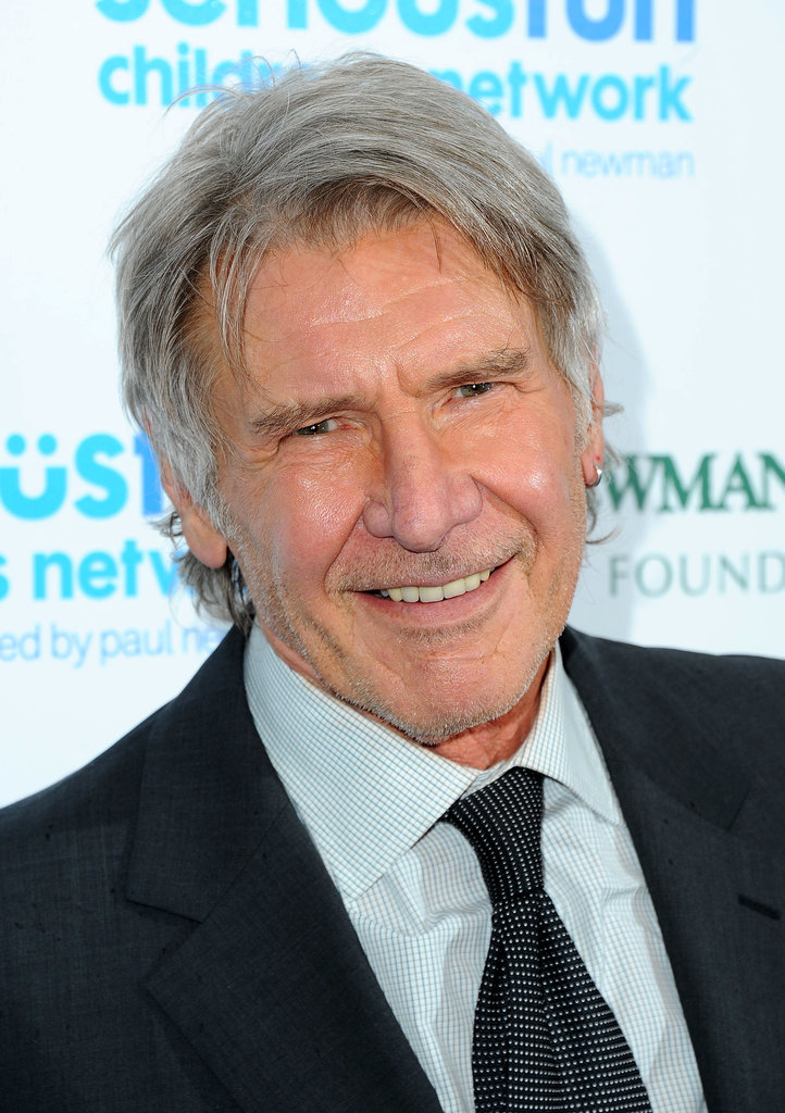 Harrison Ford Celebrity Gray Hairstyles for Men