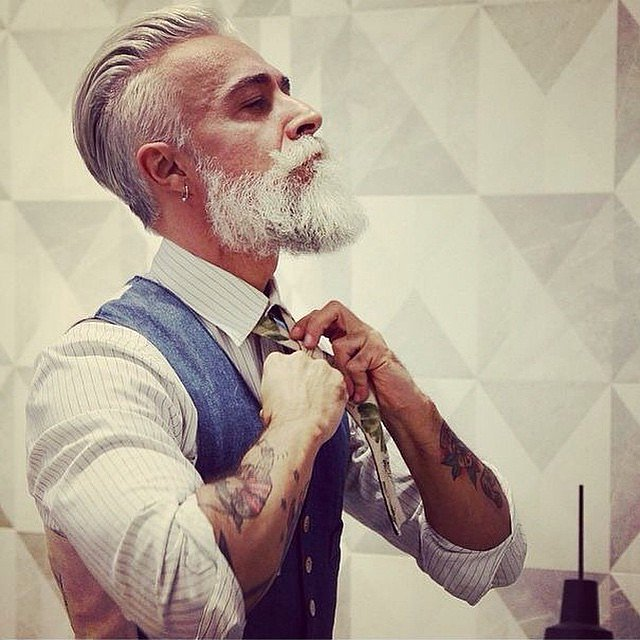 Mens Gray Hairstyles with beards
