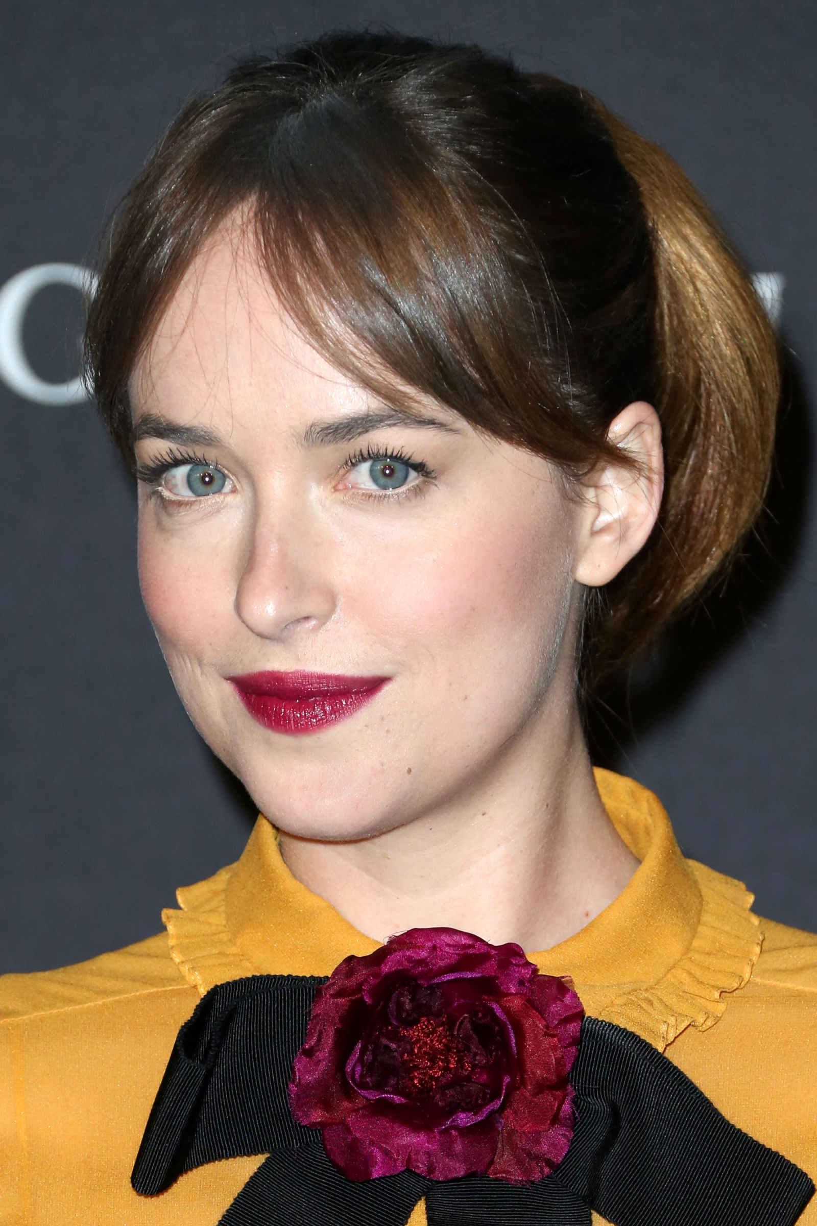 Dakota Johnson celebrity hairstyles