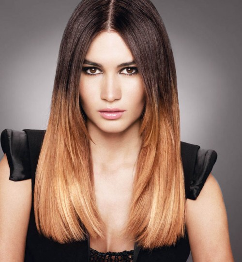 Ombre hair color hairstyles 2017 hair colors and haircuts - Ombre braun blond ...
